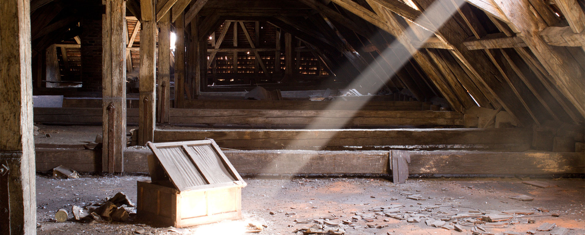 Crawl Space Cleaning Fremont